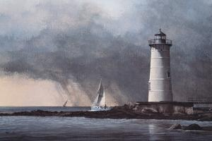 Out After the Storm by David Knowlton