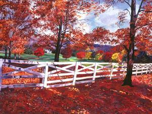 Vermont Fence by David Lloyd Glover