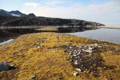 Glacial Scree, Foreshore, Trinity Hamn, Magdalenefjord, Svalbard by David Lomax