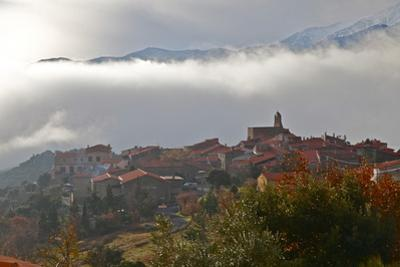 Morning Mist in Arboussols by David Lomax