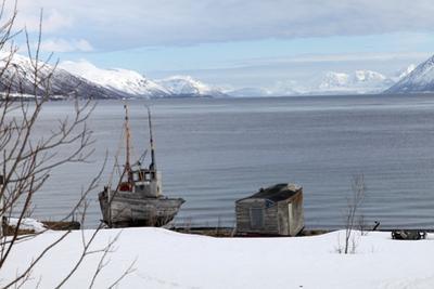 Old Fishing Boat Laid Up on Kvaloya (Whale Island), Troms, Arctic Norway, Scandinavia, Europe by David Lomax