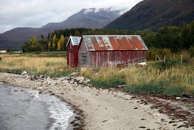 Two Old Boat Sheds, Balsfjord, Troms, North Norway, Norway, Scandinavia, Europe by David Lomax
