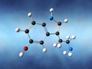 Serotonin Neurotransmitter Molecule by David Mack