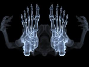 Skeleton From Below, X-ray Artwork by David Mack