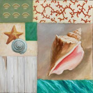Shell Collage II by David Marrocco