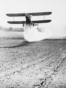 Bi-Plane Dusting Field with Pesticides by David McLane
