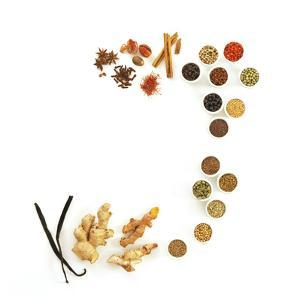 Assortment of Spices by David Munns