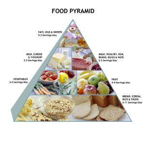 Food Pyramid by David Munns