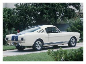 1965 Shelby GT350 by David Newhardt