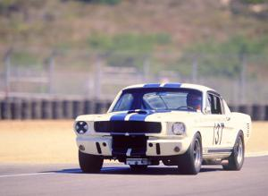 1965 Shelby GT350R by David Newhardt