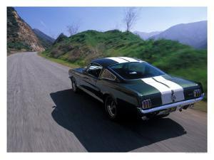 1966 Shelby GT350 by David Newhardt