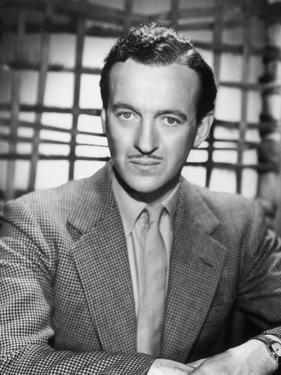 David Niven, 1946