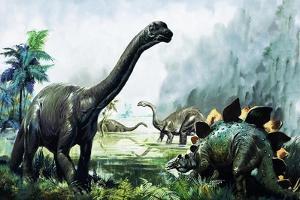 Pre-Historic Animals by David Nockels