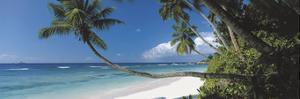 Anse Severe, Seychelles by David Noton