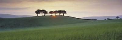 Somerset Sunrise