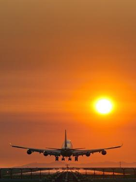 Aeroplane Landing At Sunset by David Nunuk