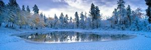 Snowy Lake by David Nunuk