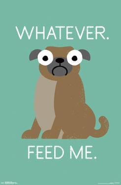 DAVID OLENICK - FEED ME