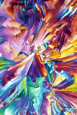 Glutamic Acid Crystals, Light Micrograph by David Parker
