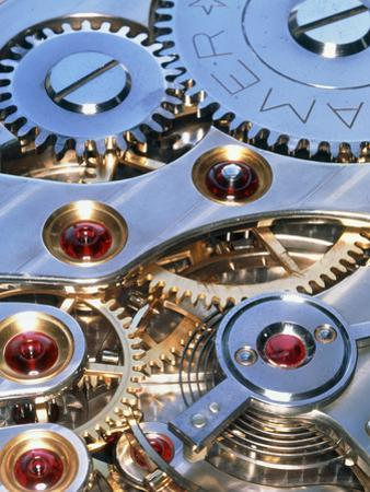 Internal Cogs And Gears of a 17-jewel Swiss Watch by David Parker