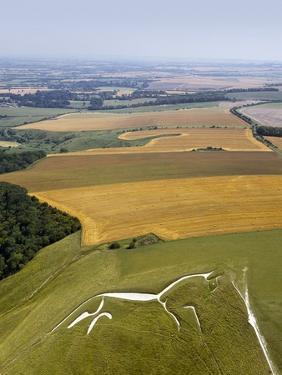Uffington White Horse, Oxfordshire, UK by David Parker