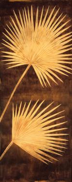 Fan Palm Triptych III by David Parks