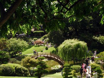 Japanese Garden, Huntington Museum and Gardens, Pasadena