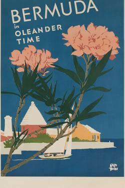 Bermuda in Oleander Time, Travel Poster by David Pollack