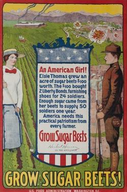 Grow Sugar Beets, American WWI Home Front Poster by David Pollack