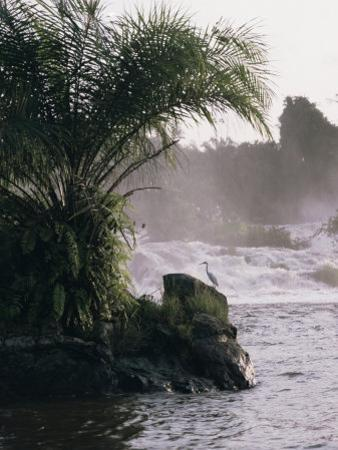 Chutes De La Lobe, Kribi, West Coast, Cameroon, Africa by David Poole