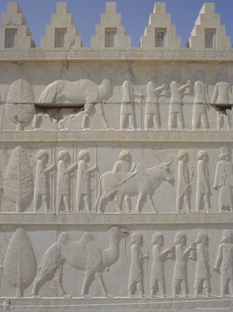 Parade of Nations Carving, Apadana Palace Staircase, Archaeological Site, Iran, Middle East by David Poole