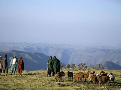 Shepherds at Geech Camp, Simien Mountains National Park, Unesco World Heritage Site, Ethiopia by David Poole