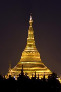 The Shwedagon Pagoda in (Rangoon) Yangon, (Burma) Myanmar by David R. Frazier