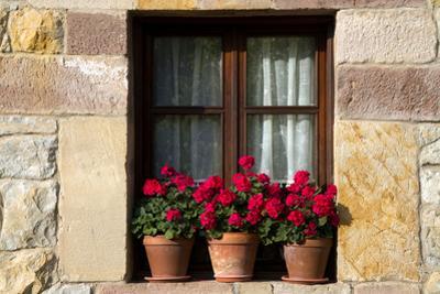 Window Flower Pots in Village of Santillana Del Mar, Cantabria, Spain