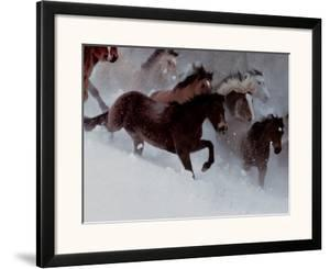 Horses in the Snow by David R. Stoecklein