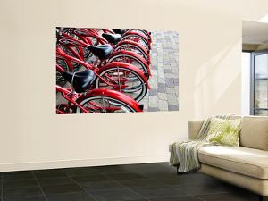 Red Bicycles for Hire by David Ryan