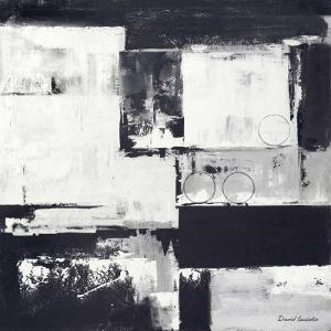 Circles on Black and White II by David Sedalia