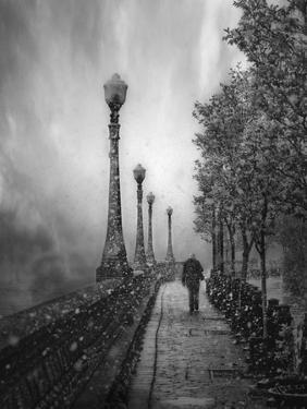 Spring Snow by David Senechal Photographie