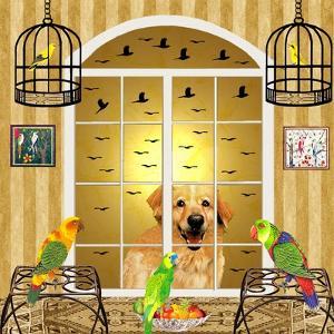 Bird Dogs IV by David Sheskin