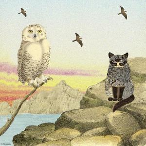 Owl and Pussycat 13 by David Sheskin