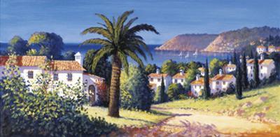 Palm Trail by David Short