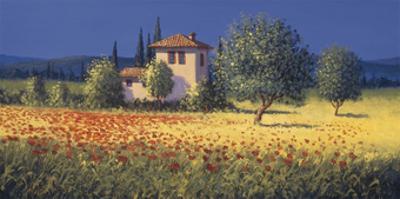 Summer Fields I by David Short