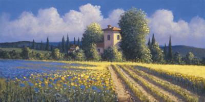Summer Fields II by David Short