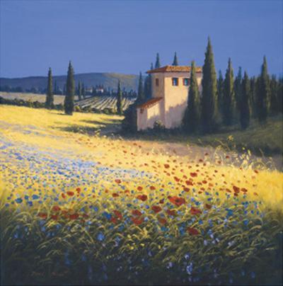 Summer Villa by David Short