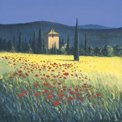 Tuscan Poppies II by David Short