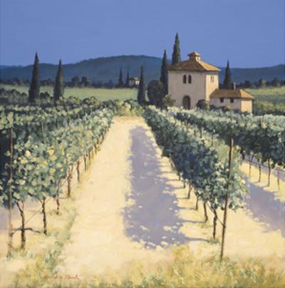 Vineyard Shadows by David Short