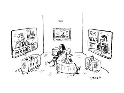 Two people on s-shape couch: one watching MSNBC, the other watching Fox Ne - New Yorker Cartoon