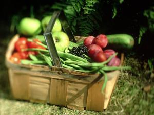 Fruit and Vegetables from the Garden, Kent by David Tipling