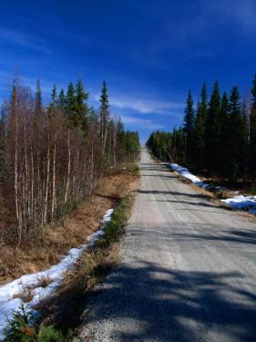 Road Through Forest, Lappi, Finland by David Tipling