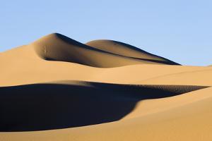 View of sand dunes in desert habitat, Khongoryn Els Sand Dunes, Southern Gobi Desert, Mongolia by David Tipling